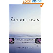 The Mindful Brain in Human Development – Reflection and Attunement in the Cultivation of Well–Being
