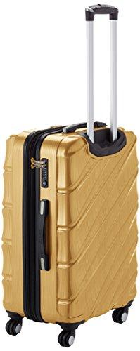 Shaik 7203134 Trolley Koffer, 2er Set (M, L), gold -
