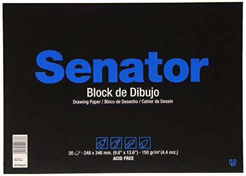 Unipapel Senator 82031 - Block de dibujo con 20 hojas, folio prolongado