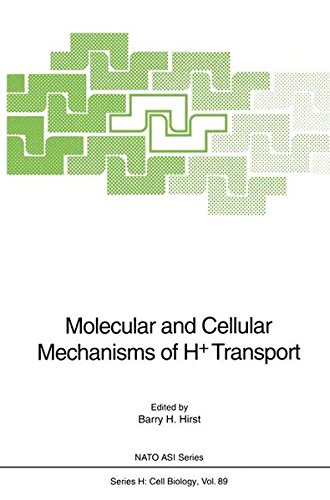 Advanced Research Membran (Molecular and Cellular Mechanisms of H+ Transport: Proceedings of the NATO Advanced Research Workshop on Molecular and Cellular Mechanisms of H+ ... July 27 to August 1, 1993 (Nato ASI Series))