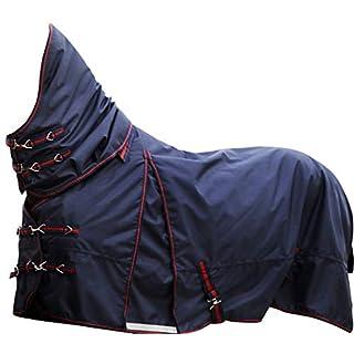 Amesbichler HorseGuard Pferde Outdoordecke Weidedecke 1680D Flexi Rug Detacher mit abnehmbarem Halsteil, 100g Füllung, wasserdicht, atmungsaktiv, 145 cm