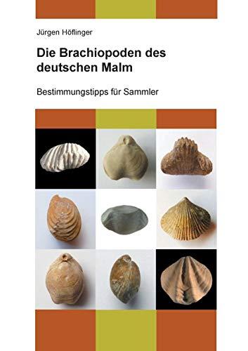 Die Brachiopoden des deutschen Malm: Bestimmungstipps für Sammler