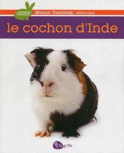 Le cochon d'Inde par Manon Tremblay