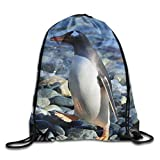 DHNKW Bay Penguin Drawstring Bag for Traveling Or Shopping Casual Daypacks School Bags