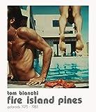 Fire island pines. Polaroids 1975-1983. Ediz. illustrata