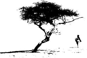 "XXL / XXXL Wandtattoo Mega Wand Aufkleber "" Baum in der"