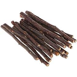 Fogun - Juego de 20 Palos de Masticar para árbol de Manzana, hámster, Ardilla, Juguetes Naturales, Loros, Conejos