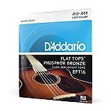 D'Addario Cordes en bronze phosphoreux et avec filet supérieur plat pour guitare acoustique D'Addario EFT16, guitare à résonateur, 12-53