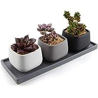 T4U 7CM Cerámico Moderno Mini Cuadrado Maceta Suculenta/Macetas de Cactus Envase Plantadores con Bandeja Rectangular - Todo Color Conjunto de 3