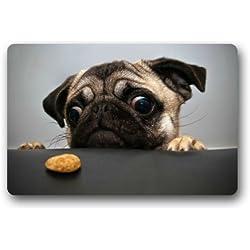 "Fantástico Felpudo Funny Pug Want Cookie CTE perro Animal puerta Mat Alfombra para interiores/exteriores/puerta delantera/baño mats £ ¬ dormitorio Felpudo 23.6""(L) X 15,7(W)"