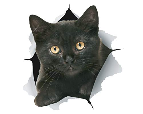 Winston & Bear Adhesivos 3D gato gatito negro - 2 Pack - Stickers para la pared, nevera