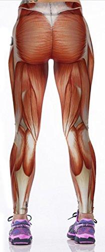 Belsen Damen Leggings mehrfarbig kürbis M Muscle lines