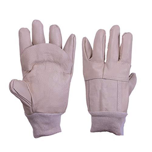 Split Rindleder Handschuhe (Zfggd Handschuh Premium Kuh Split Leder Schweißhandschuhe für Ofen/Grill/Kamin/Herd/Topflappen/Tig Welder/BBQ)