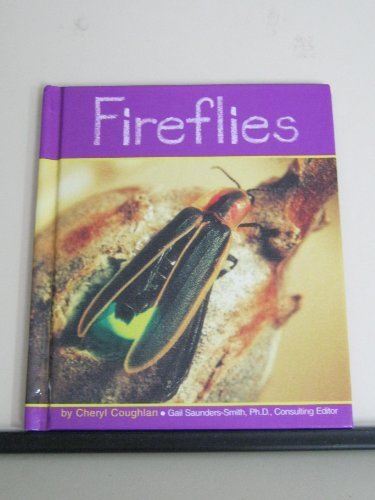 Fireflies (Insects)