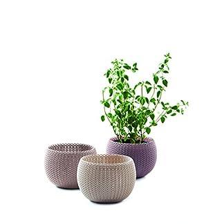 Keter –  Trio de macetas Cozies de exterior e interior de base redonda, Color arena, marrón y violeta