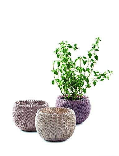 Keter -  Trio de macetas Cozies de exterior e interior de base redonda, Color arena, marrón y violeta