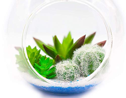 """ZAZALUM Künstliche Topfpflanzen, 33cm Extra Großes Tropfenform Aufhängen Terrarium Vase mit Faux Air Pflanze-Set und Nautische Seil Home Display Dekoration, 3.5"""" H X3.1"""
