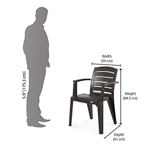 Nilkamal Passion Chair (Weather Brown)