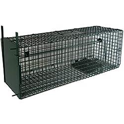 Maxx Piège de Capture infaillible - Pliable - Cage - pour Petits Animaux: Lapins, Rats, rongeurs - 80x25x30cm - avec Deux entrées