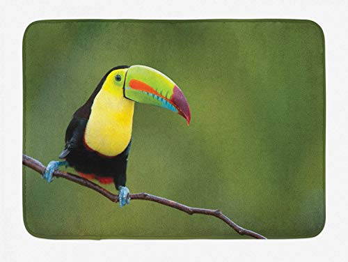 KIYINY Wildlife Bath Mat, Keel Billed Toucan Colorful on Branch Tree Rainforest Park Tropical Bird America, Plush Bathroom Decor Mat with Non Slip Backing, Multicolor 19.6X31.4 inches/50X80cm