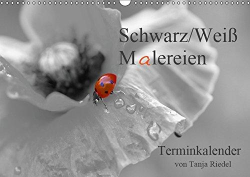 Schwarz-Weiß Malereien Terminkalender von Tanja Riedel (Wandkalender 2019 DIN A3 quer): Tolle Schwarz-Weiß Fotografien mit einem kleinen Farbtupfer ... 14 Seiten ) (CALVENDO Lifestyle)