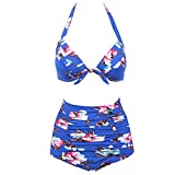 Hanhequhui New Retro Bikinis High Waist Swimsuit Female Swimwear Women Plus Size Bikini Set Bathing Suits Printed Floral Biquini 02 L