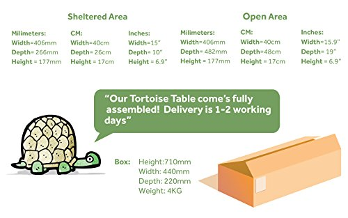 Tortoise Box - Tortoise House 7