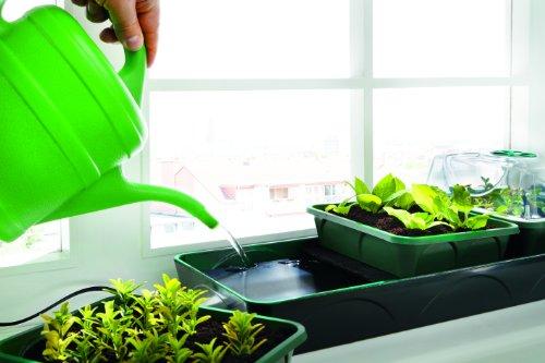 bio-green-hollandia-anzuchtstation-mit-kapillarmatte-und-wassertank-14l-l-54cm-b-17cm-h-21cm-125-w-4