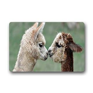 TSlook Fashions Doormat cute alpaca llama Indoor/Outdoor/Front Welcome Door Mat(23.6
