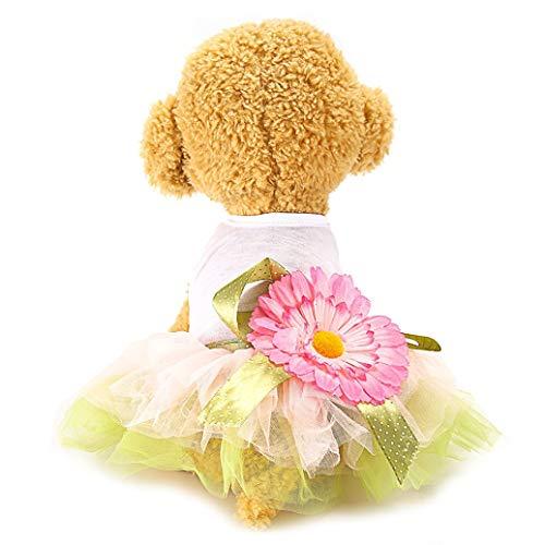 AMURAO Baumwollspitze Hund Kleid Kristalle Welpen Rock Outfit Prinzessin Mädchen Hunde Kleidung Phantasie Haustier Produkte -