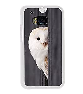 Peeping Owl 2D Hard Polycarbonate Designer Back Case Cover for HTC One M8 :: HTC M8 :: HTC One M8 Eye :: HTC One M8 Dual Sim :: HTC One M8s