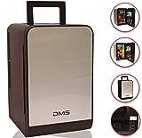 DMS® Mini Kühlschrank Minibar Kühlbox Thermobox Kühltruhe 12/230V Edelstahl 22 Liter, Tragbare Kühlbox mit Kühl- und Warmhaltefunktion, Elektrische Kühlbox für Auto Camping und Hause