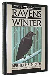 Ravens in Winter by Bernd Heinrich (1989-09-01)