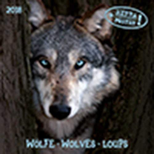 Wolves/Wölfe 2020: Kalender 2020 (Artwork Edition)