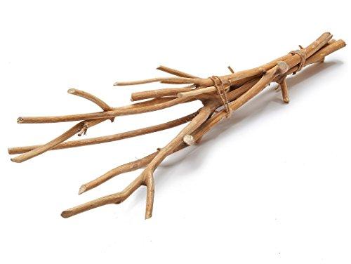 NaDeco Hartriegel Zweige Natur im Bund mit 5 Stück ca. 75cm | Dogwood | Dekozweig | Dekoast | Dekobaum | Deko Zweige | Deko Äste | Dekozweige
