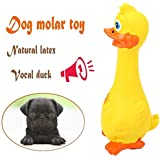 Pets Empire Safe Soft Fun Sound Latex Screaming Squeaky Duck Toys for Pet (Blue)
