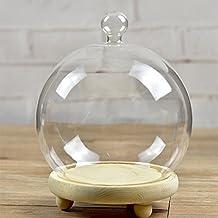 Set de 2botes de campana Bell de cúpula de cristal terrario Air carnosas Plant Covers Diámetro 15cm