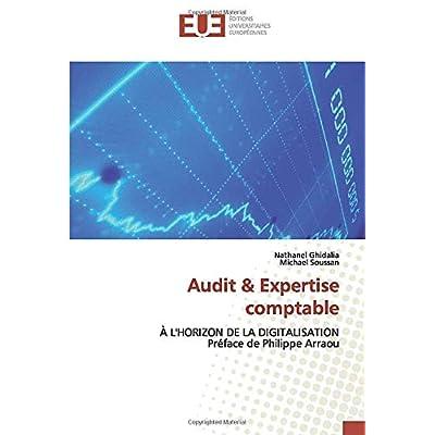 Audit & Expertise comptable: À L'HORIZON DE LA DIGITALISATION Préface de Philippe Arraou