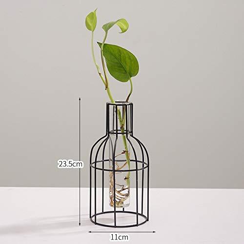 SMAQZ Hydrokulturvasendekoration - Getrocknete Blumen des Wohnzimmers, Hauptdekorationsweinflasche Der Blumenanordnung Große Hydrokulturflasche