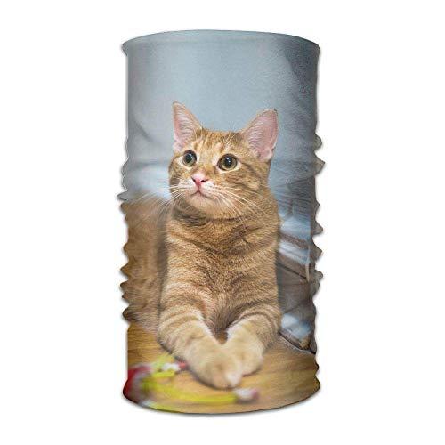 Nifdhkw Headwear Multifunctional Sweatband Cat Kitten Kitty Pet Face Mask Scarf Bandana Head Wrap Liner Multicolor13 -
