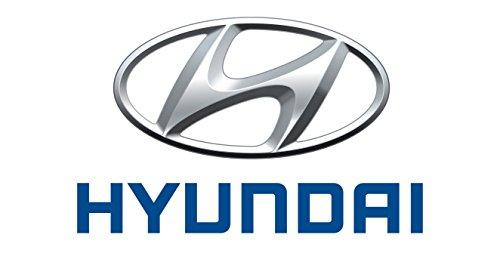 Original Hyundai 95430-2D000 TRANSMITTER ASSY-IGN REMOTE START / 954302D000 (Remote-start Kia)