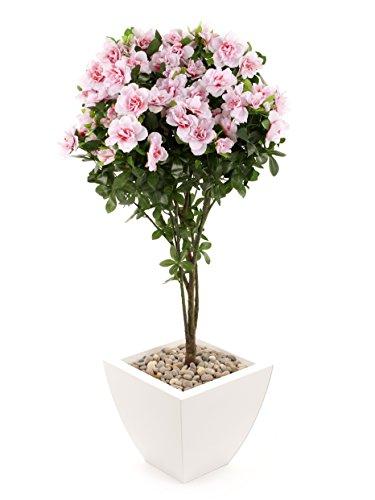 closer-to-nature-ft036pw-flor-de-interior-rododendro