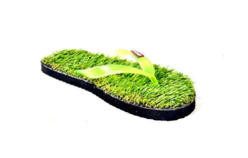 Blue Sky Grass Flat Green Slipper