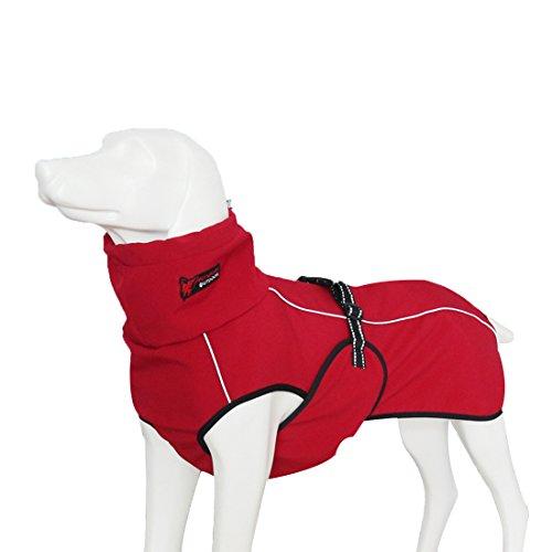 GWELL Hund Hundejacke Wasserdicht Fleece gefüttert Regenjacke Winterjacke Funktion Weste mit D-Ringe Gurt für Mittelgroßen Großen Hund Winter Herbst Frühling Rot L