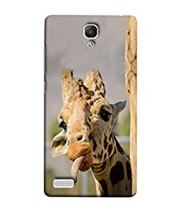 Xiaomi Redmi Note, Xiaomi Redmi Note 4G, Xiaomi Redmi Note Prime Back Cover (Africa African Animal Fun Background Brown Beautiful Chicago) From Printvisa