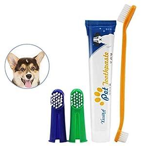 Brosse à dents pour animaux de compagnie de compagnie Saveur pour chat, Chiens, nettoyage, dentifrice JO, ensemble brosse(1X dentifrice 2x tête de brosse à dents 1x brosse à dents double tête)