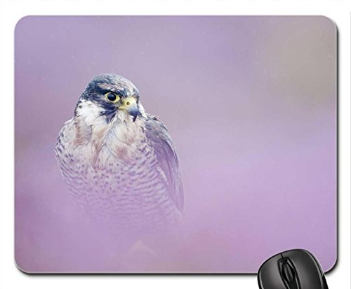 peregrine-falcon-mouse-pad-mousepad-birds-mouse-pad