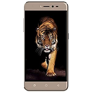 Coolpad Note 5 Lite C (Champagne Gold, 2GB RAM + 16 GB)