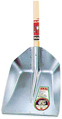Ideal Quadra avec bord Pelle taille 7
