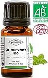 Huile essentielle de Menthe Verte BIO - MyCosmetik - 10 ml